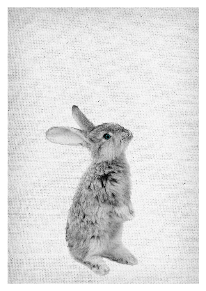 Rabbit Wall Art, Peekaboo Rabbit, Rabbit Poster, Rabbit Print, Rabbit Nursery Decor, Rabbit download, Rabbit black and white, Bunny Wall Art, Bunny Poster, bunny Print, Rabbit scandinavian Wall Art, Froilein Juno, Rabbit printable,