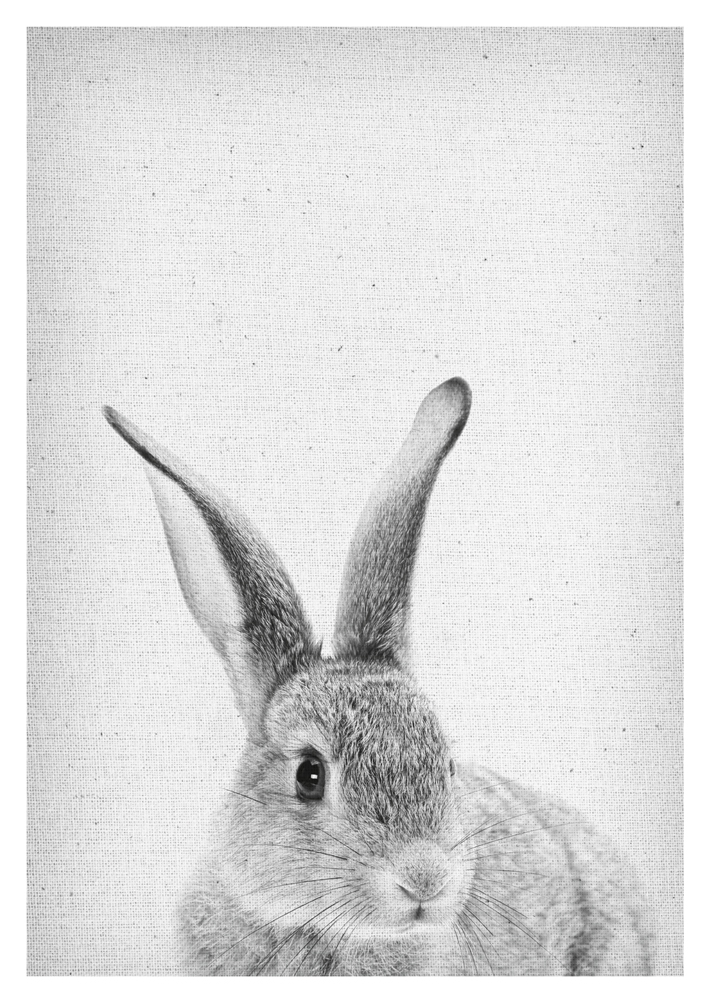 Rabbit Wall Art, Peekaboo Rabbit, Rabbit Poster, Rabbit Print, Rabbit Nursery Decor, Rabbit download, Rabbit black and white, Bunny Wall Art, Bunny Poster, bunny Print, Rabbit scandinavian Wall Art, Froilein Juno