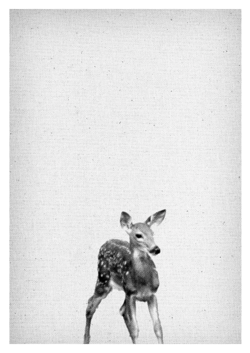 Baby Deer Print, Fawn Kindergarten Wall Art, Animal Print, black and white Decor, Deer printable Poster, Deer Download Deer Nursery Wall Art