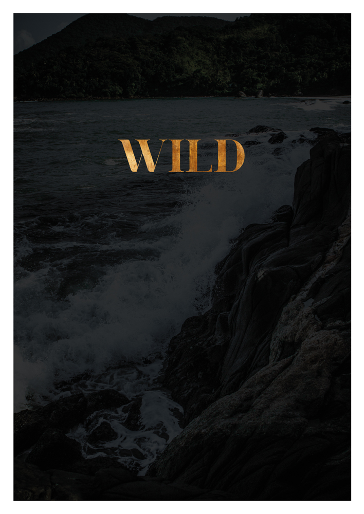 Wild Print Nature Print Travel Print Travel Poster Travel quote Inspirational Poster Scandinavian Wall Art Copper Poster black wild decor
