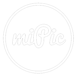 MiPic Froilein Juno Art Phone Cases